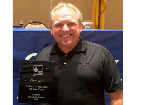 CVO 2018 Associate Member of the year.jpg